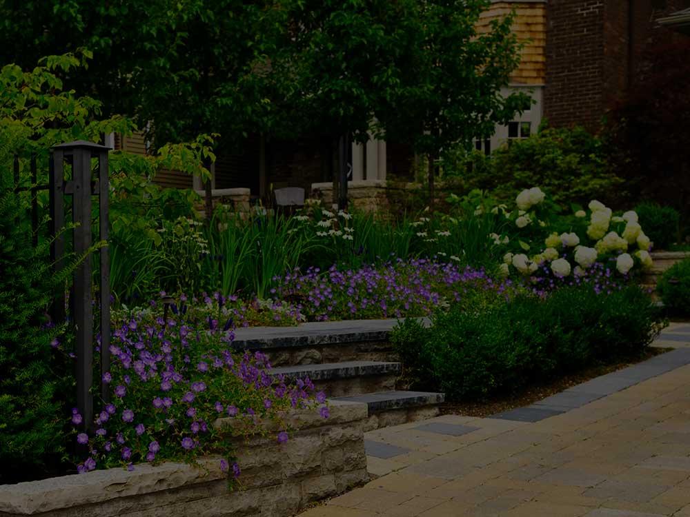 Woodland Commercial Garden Design