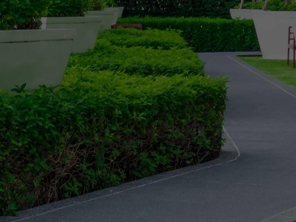 Davis Commercial Landscaping