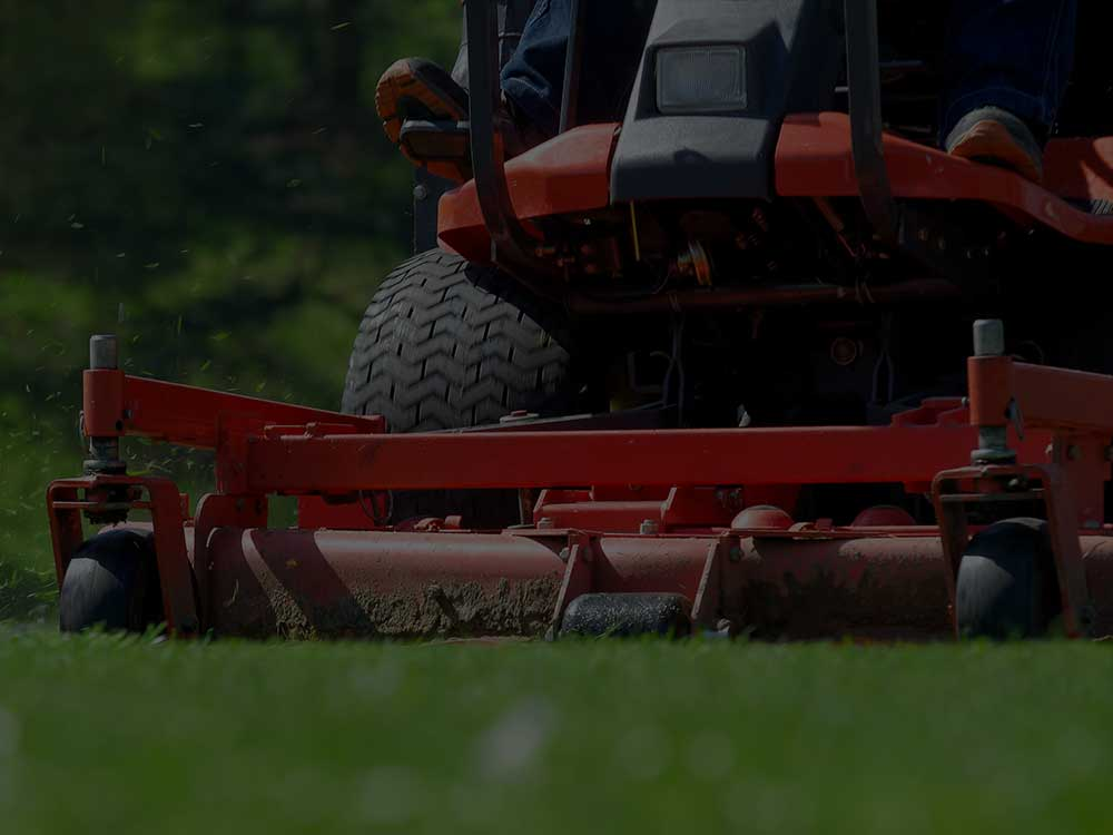 Davis Commercial Lawn Mowing