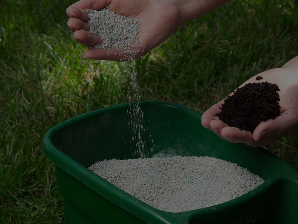 Sacramento Fertilization
