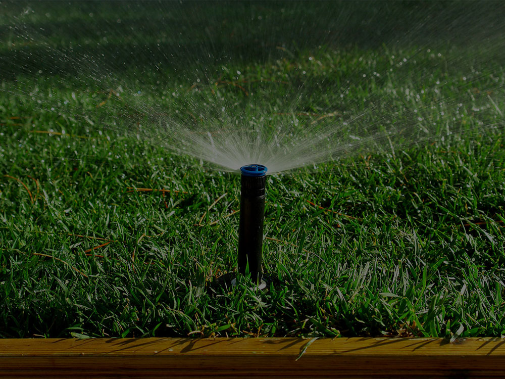 Sacramento Irrigation