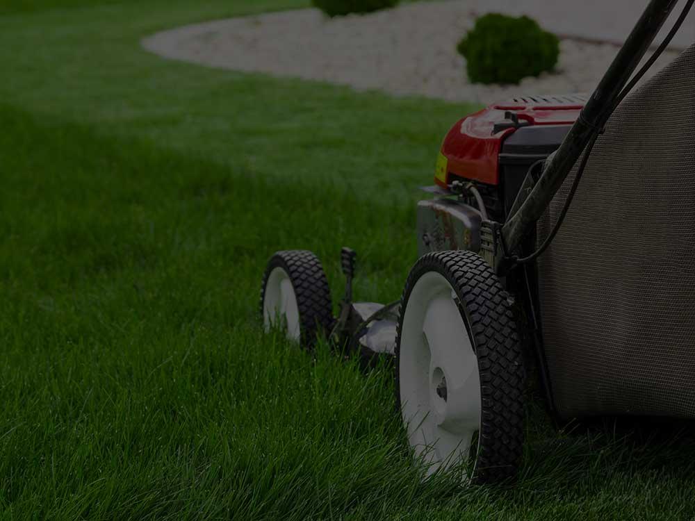 Davis Lawn Mowing