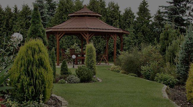 Sacramento Garden Design