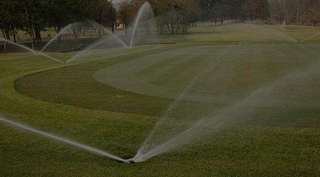 Woodland Irrigation
