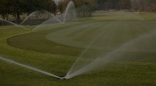 Davis Irrigation